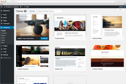 WordPress Beginners Training Courses for themes and SEO training